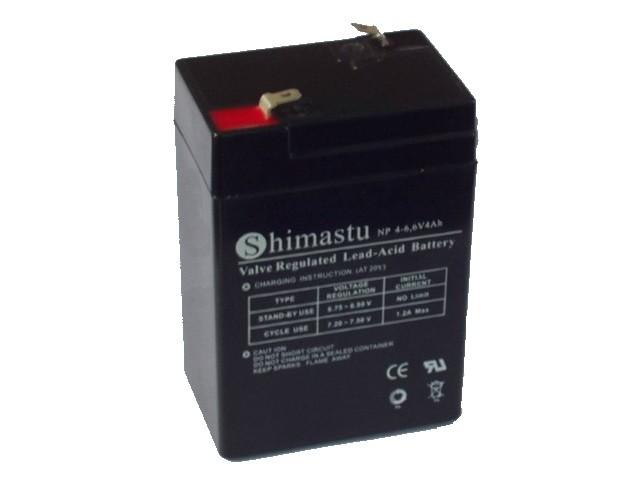 Bateria Recarregavel Np 4-6...